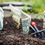 money-investing-garden